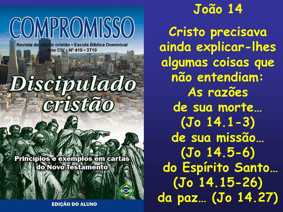 João 14 Cristo precisava ainda explicar-lhes algumas coisas que não entendiam: As razões de sua morte… (Jo 14.1-3) de sua missão… (Jo 14.5-6) do Espír