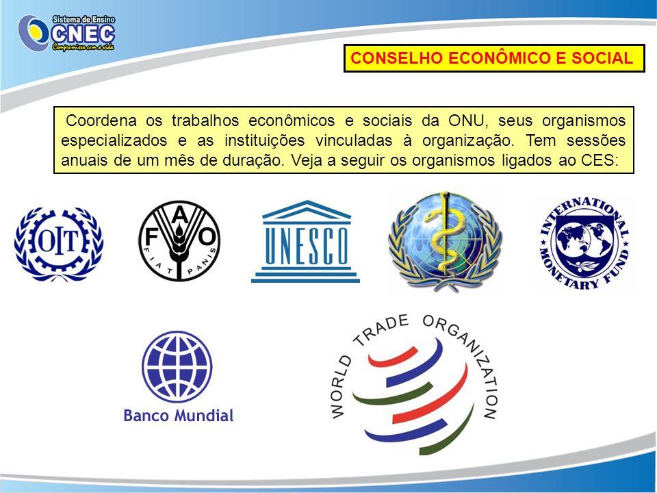 CONSELHO ECONÔMICO E SOCIAL Coordena os trabalhos econômicos e sociais da ONU, seus organismos especializados e as instituições vinculadas à organizaç