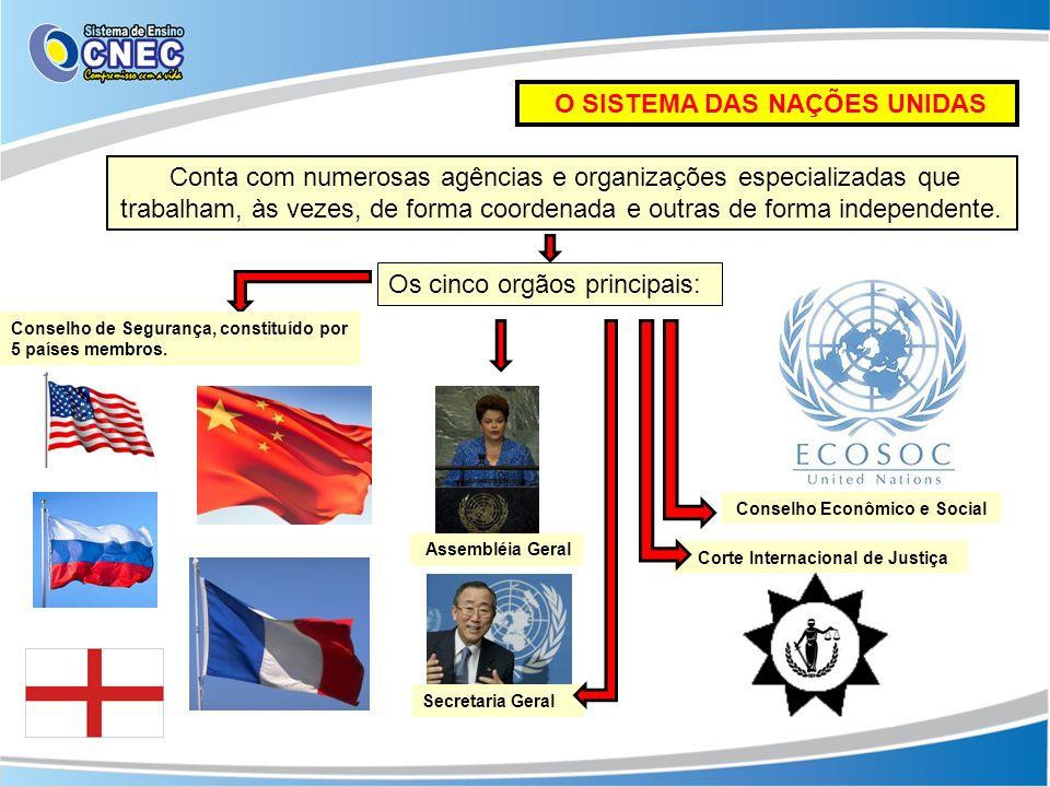 A ASSEMBLÉIA GERAL: Principal instância deliberativa, é formada por todos os países- membros, que participam com direitos iguais (cada Estado corresponde a um voto).