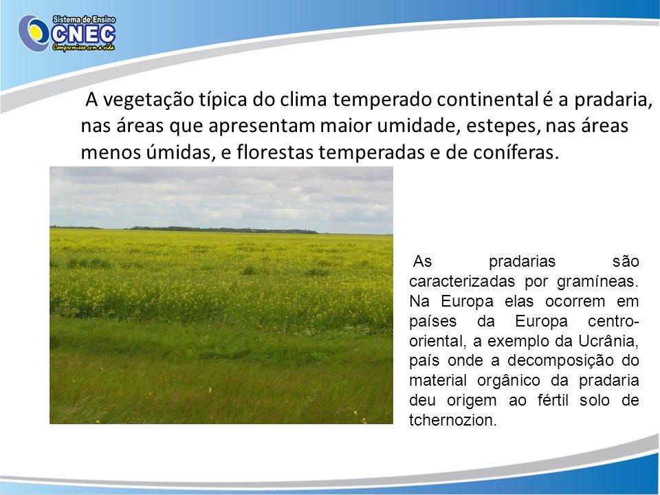 A vegetação típica do clima temperado continental é a pradaria, nas áreas que apresentam maior umidade, estepes, nas áreas menos úmidas, e florestas t