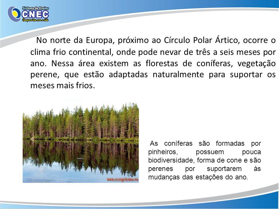 No norte da Europa, próximo ao Círculo Polar Ártico, ocorre o clima frio continental, onde pode nevar de três a seis meses por ano. Nessa área existem