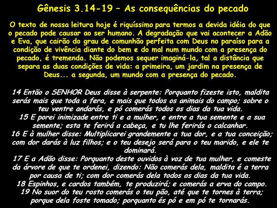 O texto de nossa leitura hoje é riquíssimo para termos a devida idéia do que o pecado pode causar ao ser humano. A degradação que vai acontecer a Adão