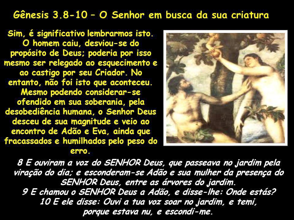 8 E ouviram a voz do SENHOR Deus, que passeava no jardim pela viração do dia; e esconderam-se Adão e sua mulher da presença do SENHOR Deus, entre as á