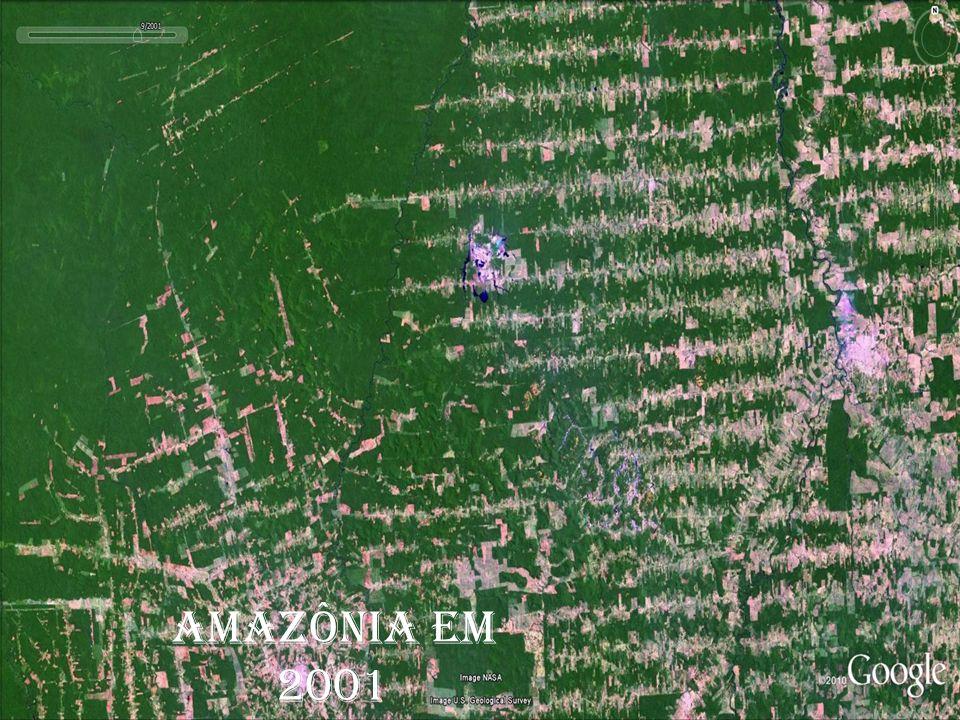 ESPAÇO GEOGRÁFICO Estudo do espaço geográfico por imagens de satélites. AMAZÔNIA EM 1975 AMAZÔNIA EM 1989 AMAZÔNIA EM 2001