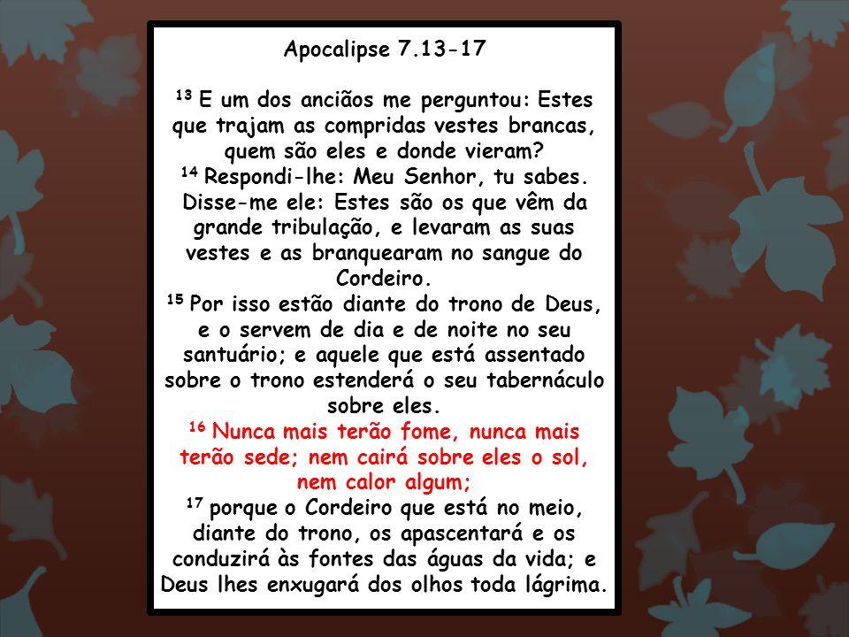 Apocalipse 7.13-17 13 E um dos anciãos me perguntou: Estes que trajam as compridas vestes brancas, quem são eles e donde vieram? 14 Respondi-lhe: Meu