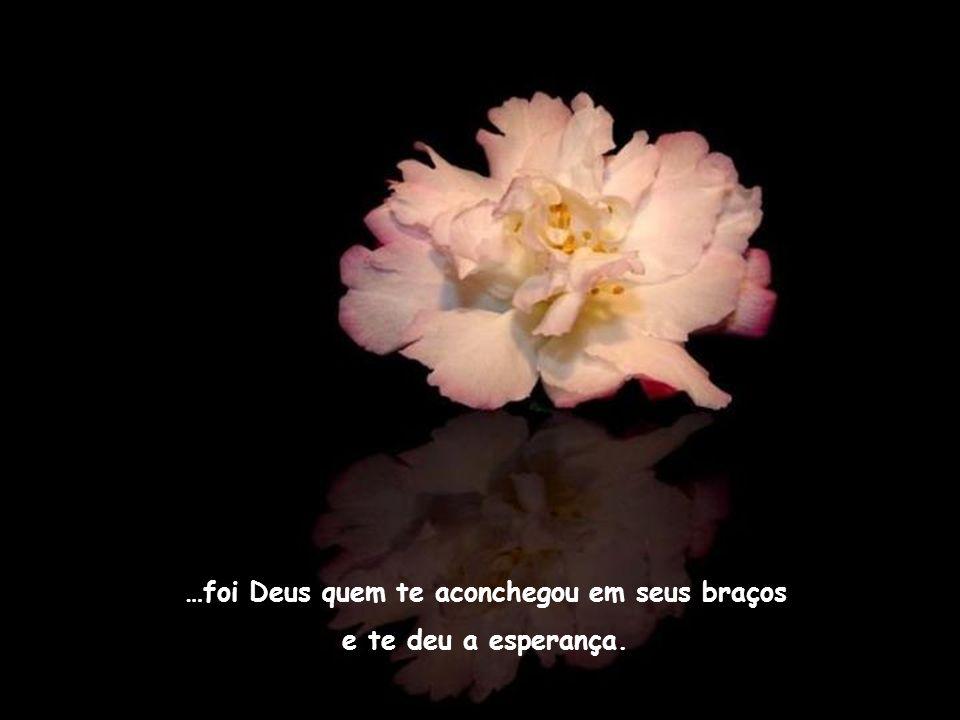Se te aconteceu de sentir uma imensa tristeza na alma e rapidamente, como um impulso, o amor se expande em você e uma paz inexplicável invade todo seu ser…