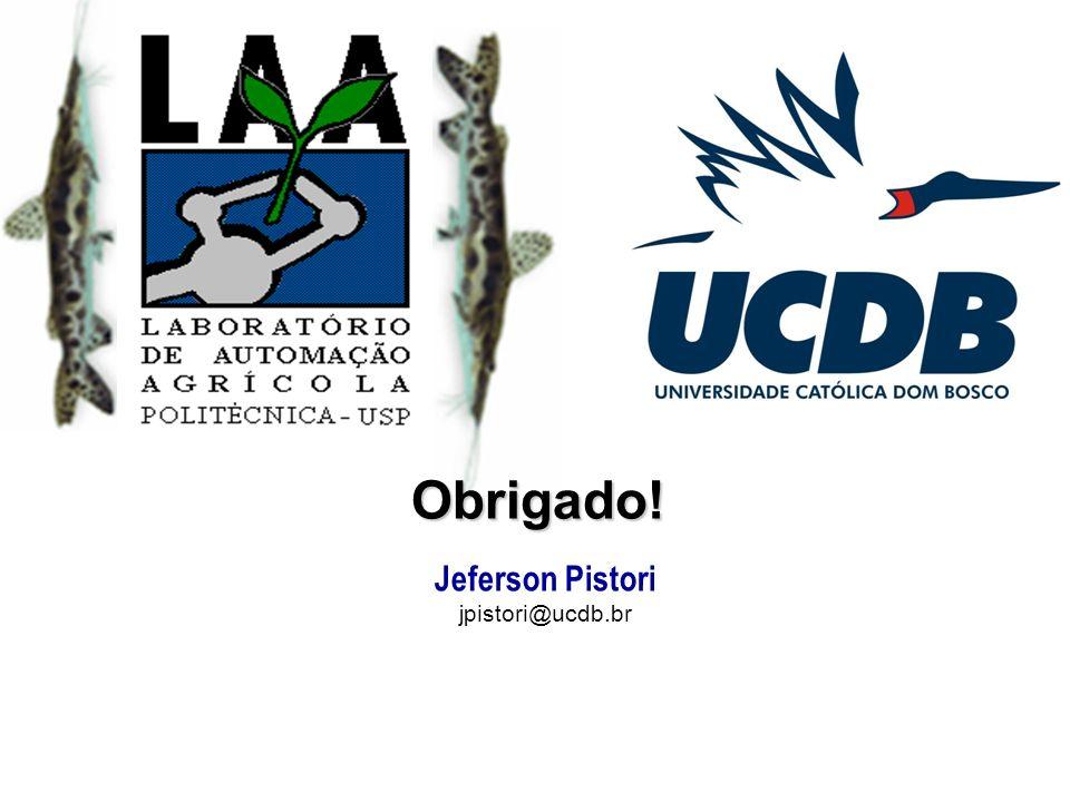 Obrigado! Jeferson Pistori jpistori@ucdb.br