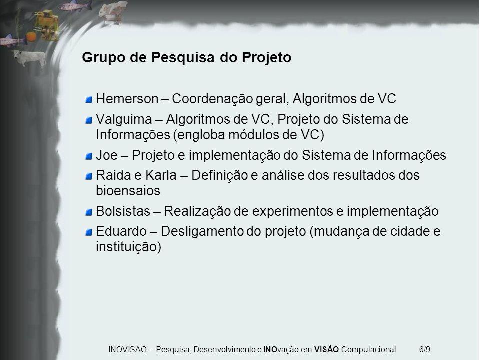INOVISAO – Pesquisa, Desenvolvimento e INOvação em VISÃO Computacional 6/9 Grupo de Pesquisa do Projeto Hemerson – Coordenação geral, Algoritmos de VC