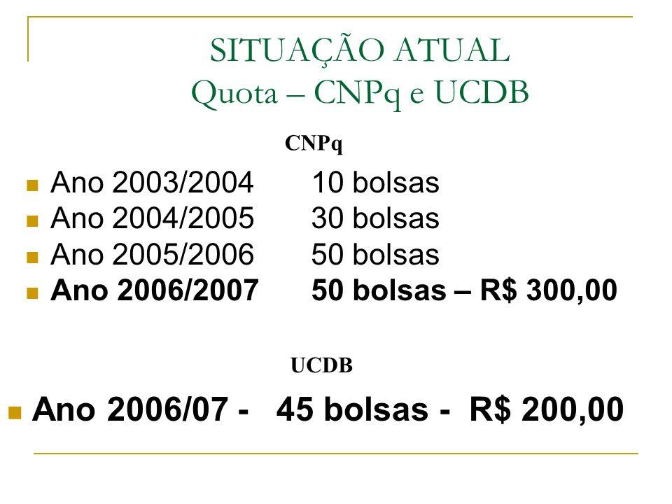 SITUAÇÃO ATUAL Quota – CNPq e UCDB Ano 2003/2004 10 bolsas Ano 2004/2005 30 bolsas Ano 2005/2006 50 bolsas Ano 2006/2007 50 bolsas – R$ 300,00 Ano 2006/07 - 45 bolsas - R$ 200,00 CNPq UCDB