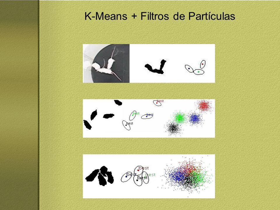 K-Means + Filtros de Partículas