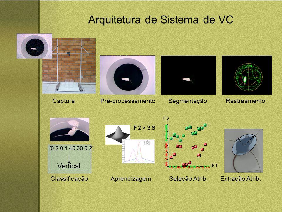 Arquitetura de Sistema de VC CapturaPré-processamentoSegmentaçãoRastreamento Extração Atrib.Seleção Atrib.