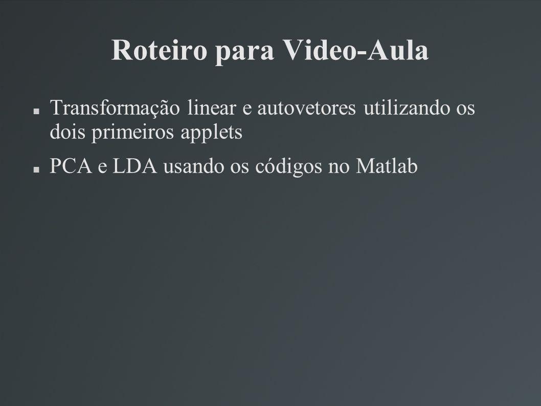 Roteiro para Video-Aula Transformação linear e autovetores utilizando os dois primeiros applets PCA e LDA usando os códigos no Matlab