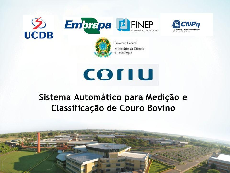 1 Sistema Automático para Medição e Classificação de Couro Bovino