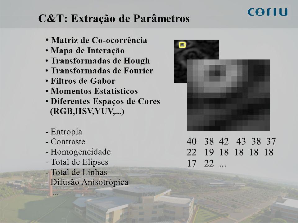 8 C&T: Extração de Parâmetros Matriz de Co-ocorrência Mapa de Interação Transformadas de Hough Transformadas de Fourier Filtros de Gabor Momentos Esta