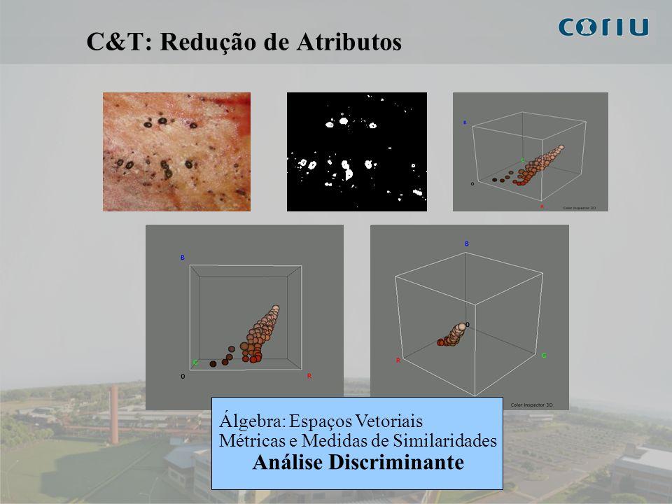 9 C&T: Redução de Atributos Álgebra: Espaços Vetoriais Métricas e Medidas de Similaridades Análise Discriminante