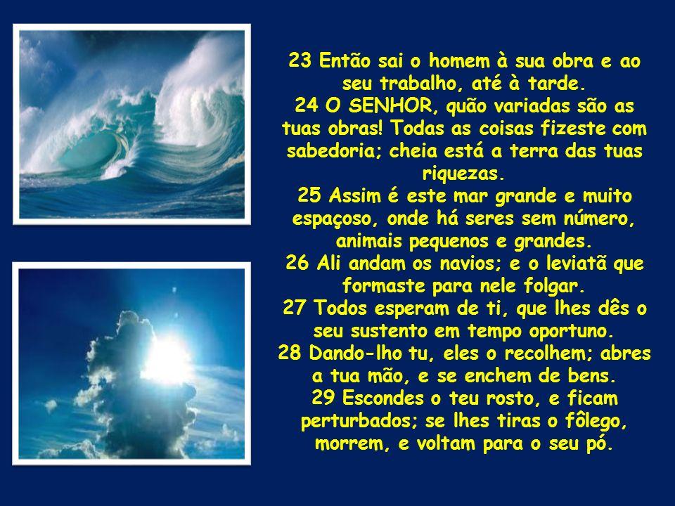 23 Então sai o homem à sua obra e ao seu trabalho, até à tarde. 24 O SENHOR, quão variadas são as tuas obras! Todas as coisas fizeste com sabedoria; c