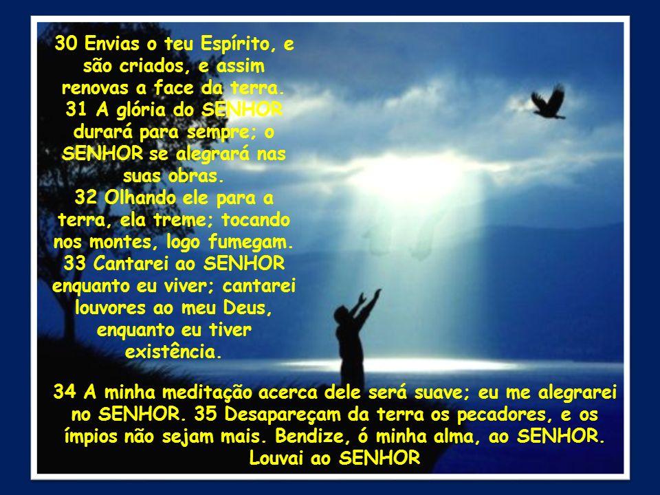 30 Envias o teu Espírito, e são criados, e assim renovas a face da terra. 31 A glória do SENHOR durará para sempre; o SENHOR se alegrará nas suas obra