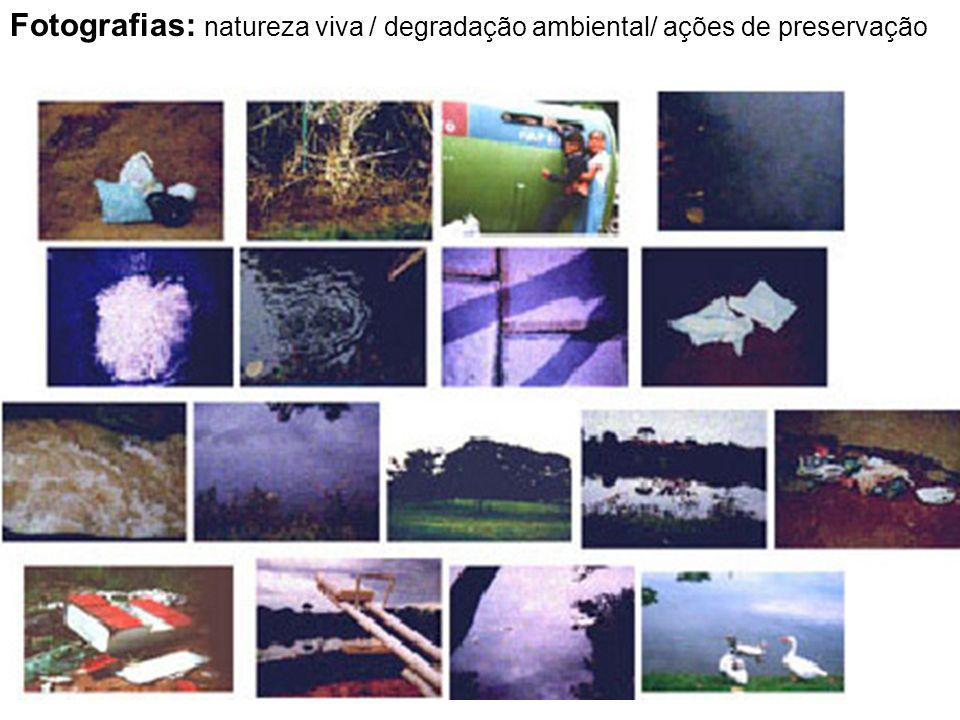 Fotografias: natureza viva / degradação ambiental/ ações de preservação