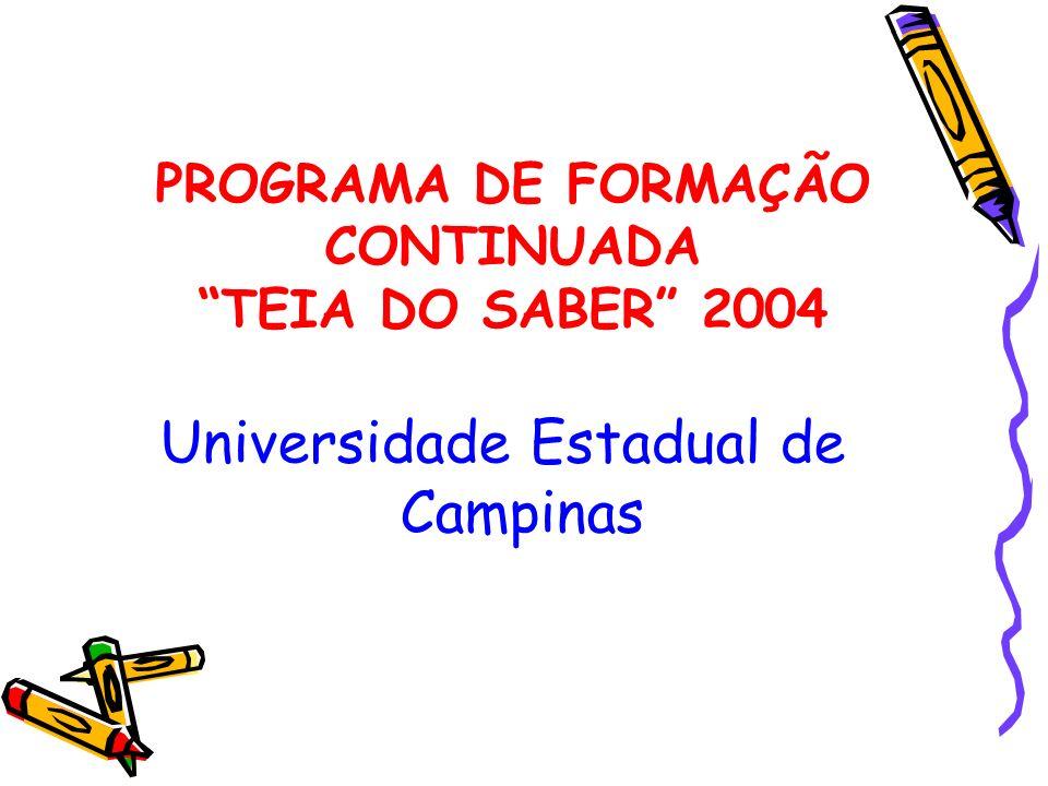 PROGRAMA DE FORMAÇÃO CONTINUADA TEIA DO SABER 2004 Universidade Estadual de Campinas