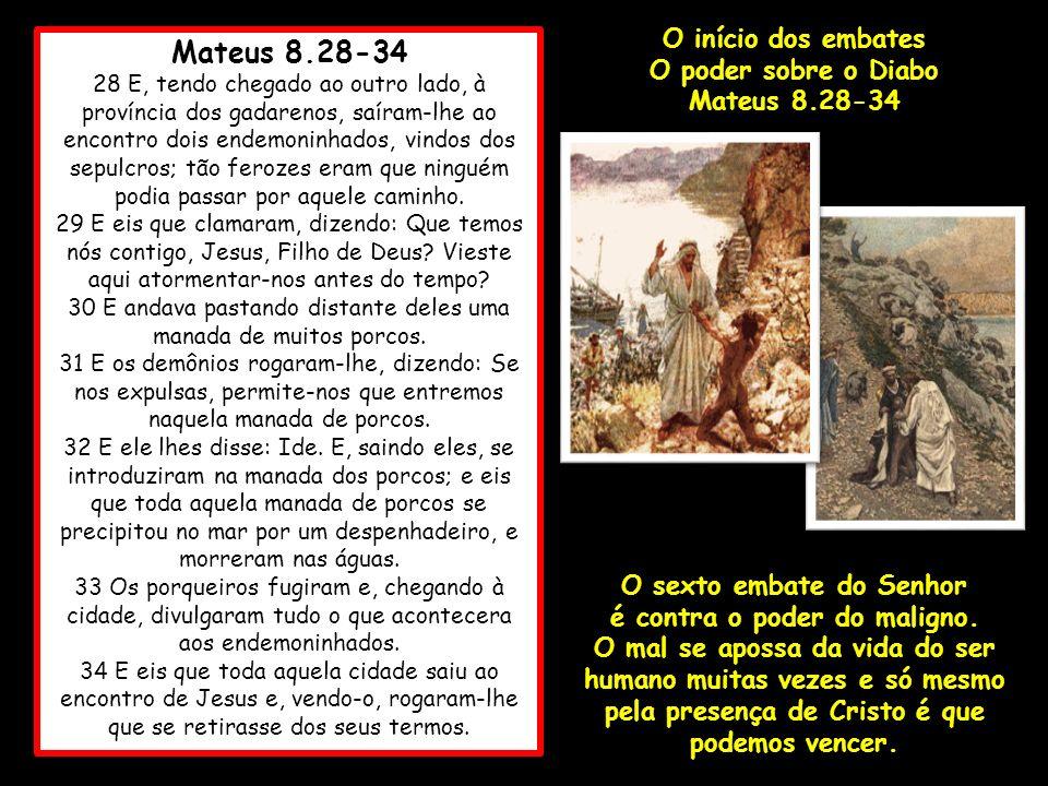 Mateus 8.28-34 28 E, tendo chegado ao outro lado, à província dos gadarenos, saíram-lhe ao encontro dois endemoninhados, vindos dos sepulcros; tão fer
