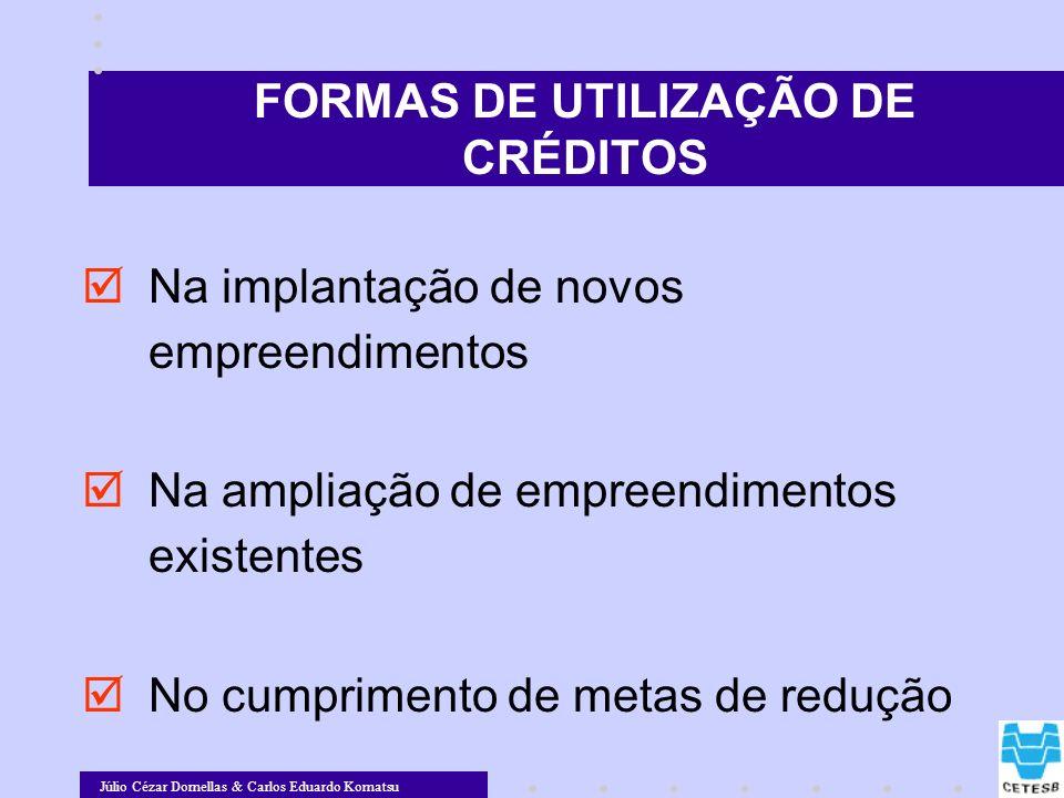 Júlio Cézar Dornellas & Carlos Eduardo Komatsu Na implantação de novos empreendimentos Na ampliação de empreendimentos existentes No cumprimento de me
