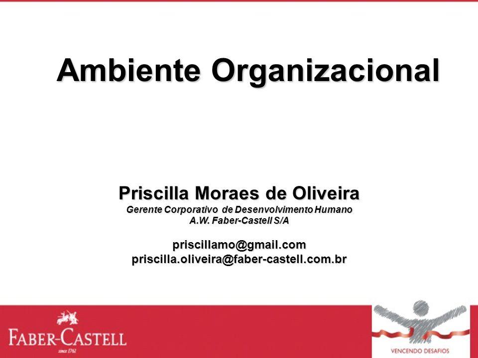 Ambiente Organizacional Priscilla Moraes de Oliveira Gerente Corporativo de Desenvolvimento Humano A.W. Faber-Castell S/A priscillamo@gmail.compriscil