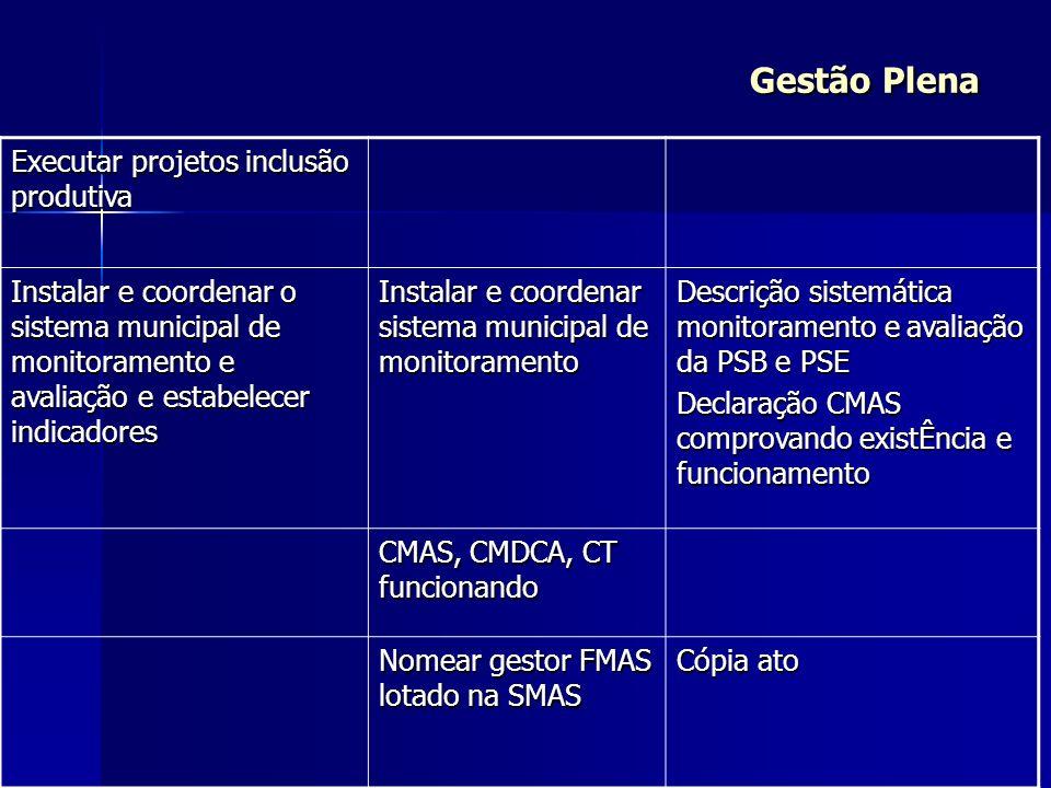 Gestão Plena Executar projetos inclusão produtiva Instalar e coordenar o sistema municipal de monitoramento e avaliação e estabelecer indicadores Inst