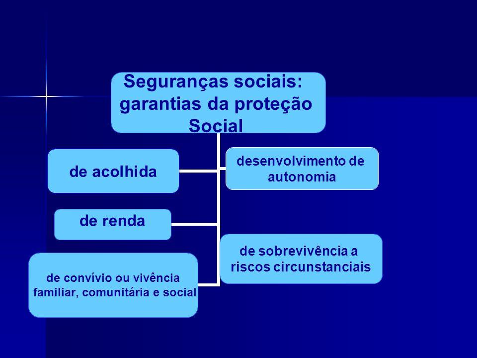 Seguranças sociais: garantias da proteção Social de renda de sobrevivência a riscos circunstanciais de convívio ou vivência familiar, comunitária e so