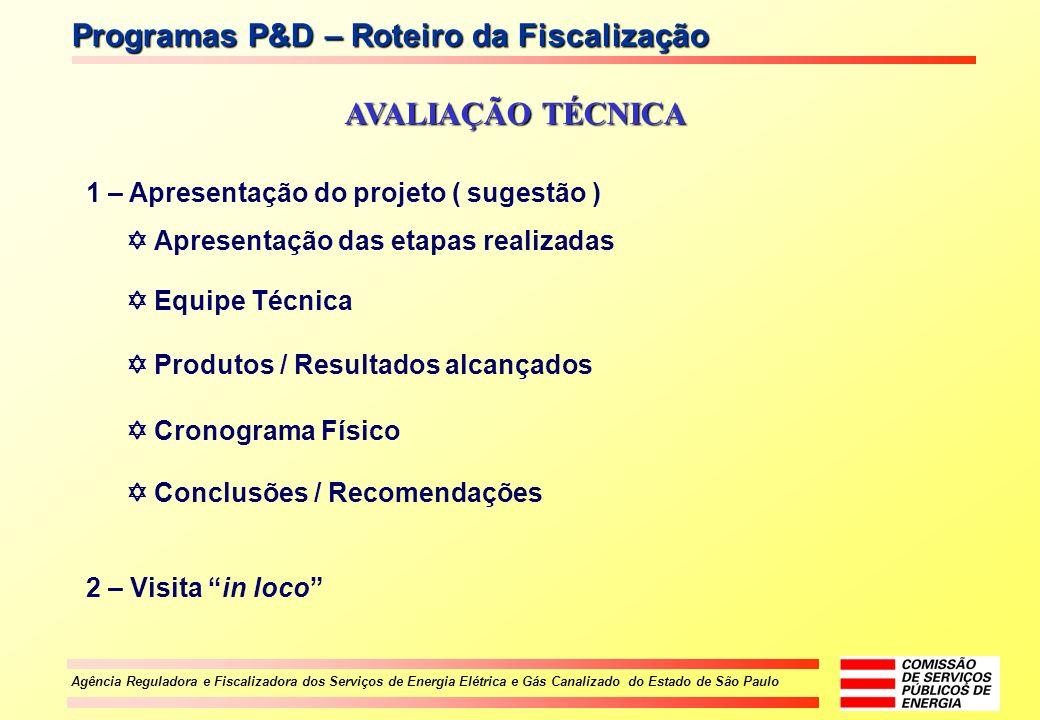 Agência Reguladora e Fiscalizadora dos Serviços de Energia Elétrica e Gás Canalizado do Estado de São Paulo Programas P&D – Roteiro da Fiscalização AV