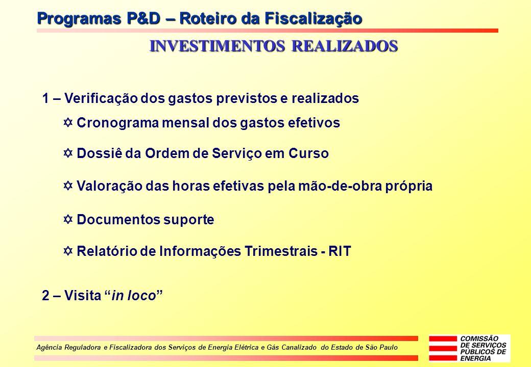 Agência Reguladora e Fiscalizadora dos Serviços de Energia Elétrica e Gás Canalizado do Estado de São Paulo Programas P&D – Roteiro da Fiscalização IN