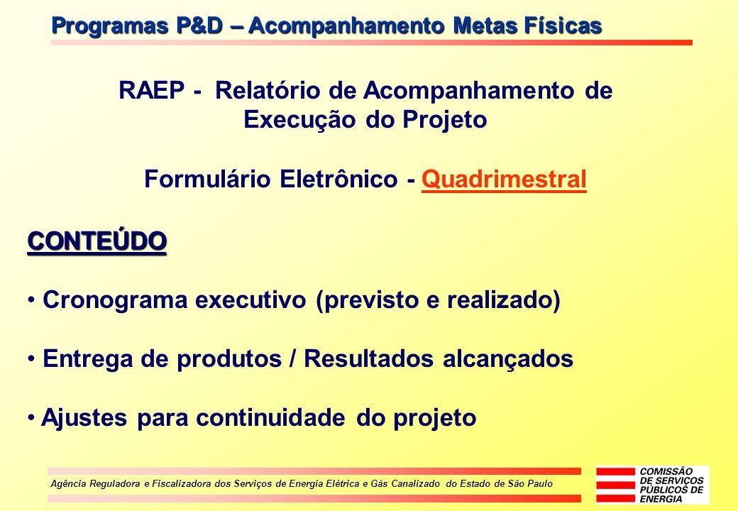 Agência Reguladora e Fiscalizadora dos Serviços de Energia Elétrica e Gás Canalizado do Estado de São Paulo RAEP - Relatório de Acompanhamento de Exec