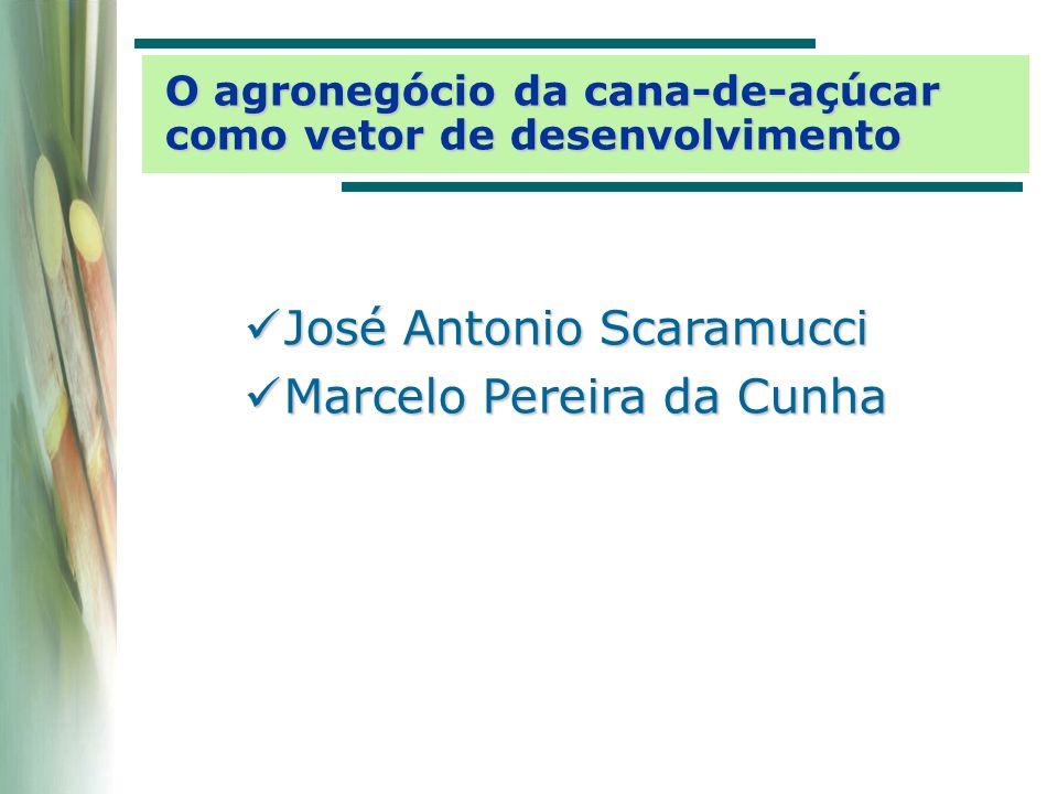A economia brasileira com 44 setores impactos sobre o nível de produção SetorDiretos e indiretos TotalParticipação Destilação de álcool 101.846.799102.913.47526,6% Cana-de-açúcar45.170.34545.921.51511,9% Refino do petróleo 16.507.63526.299.2946,8% Comércio5.033.97221.808.2885,6% Aluguel de imóveis 509.98417.496.5724,5% Resto da agropecuária 1.710.83116.282.9414,2% Indústria de açúcar 12.626.48313.588.5383,5% Químicos diversos 10.163.84712.608.4373,3% Serviços prestados às famílias 220.74412.287.6533,2% Transportes4.079.52311.485.8183,0% Serviços industriais de utilidade pública 2.514.7029.876.4002,6% Comunicações1.628.5947.420.2351,9% Serviços prestados às empresas 3.711.8167.071.2201,8% Máquinas e tratores 5.369.9486.972.5761,8% Outros produtos alimentares 1.532.8886.867.1351,8% [R$ mil] 233.858.775(9,20%)386.705.704(15,21%)