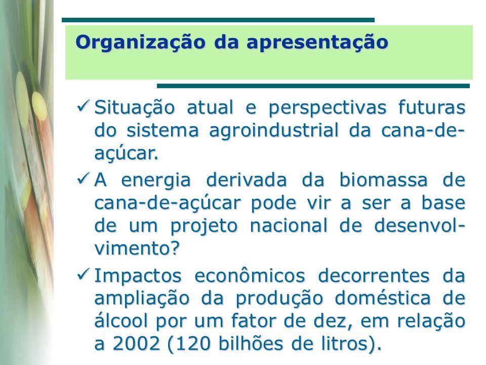 SetorDiretos e indiretos Total Destilação de álcool 900,6%910,0% Cana-de-açúcar480,1%488,1% Indústria de açúcar 77,8%83,7% Químicos diversos 26,4%32,8% Refino do petróleo 11,5%18,3% Elementos químicos não-petroquímicos 11,3%16,5% Extração de petróleo e gás 9,6%15,3% Outros produtos alimentares 3,0%13,3% Transportes4,6%13,0% Serviços privados não-mercantis 0,0%12,5% Farmacêutica e de perfumaria 1,1%12,3% Aluguel de imóveis 0,4%12,2% Máquinas e tratores 9,4%12,2% Comunicações2,7%12,2% Artigos do vestuário 0,2%12,2% A economia brasileira com 44 setores impactos sobre o nível de produção