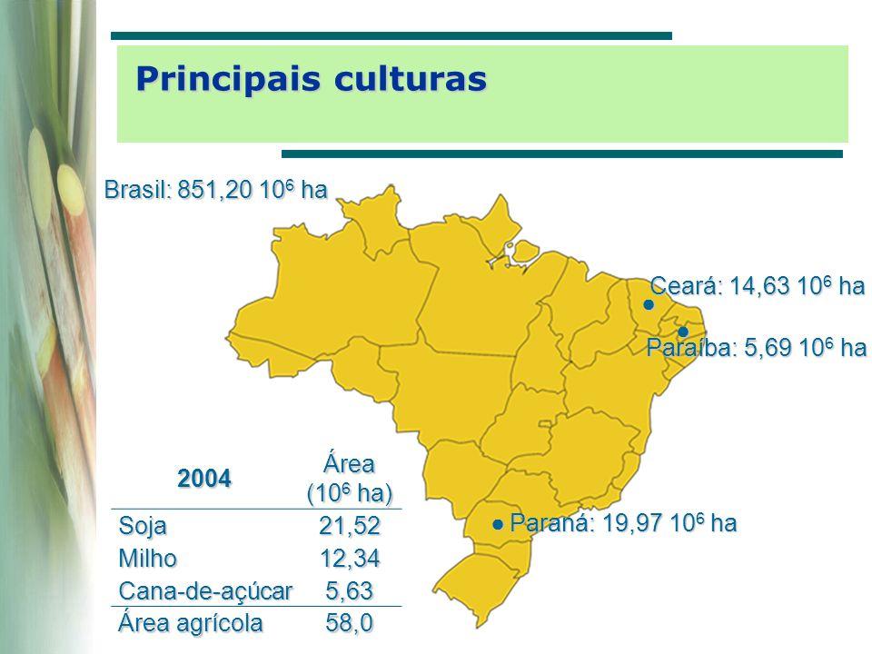 Área (10 6 ha) Total204 Agriculturável137 Pastagem35 Culturas anuais 10 Culturas perenes e florestas 2 Disponível90 Cerrado