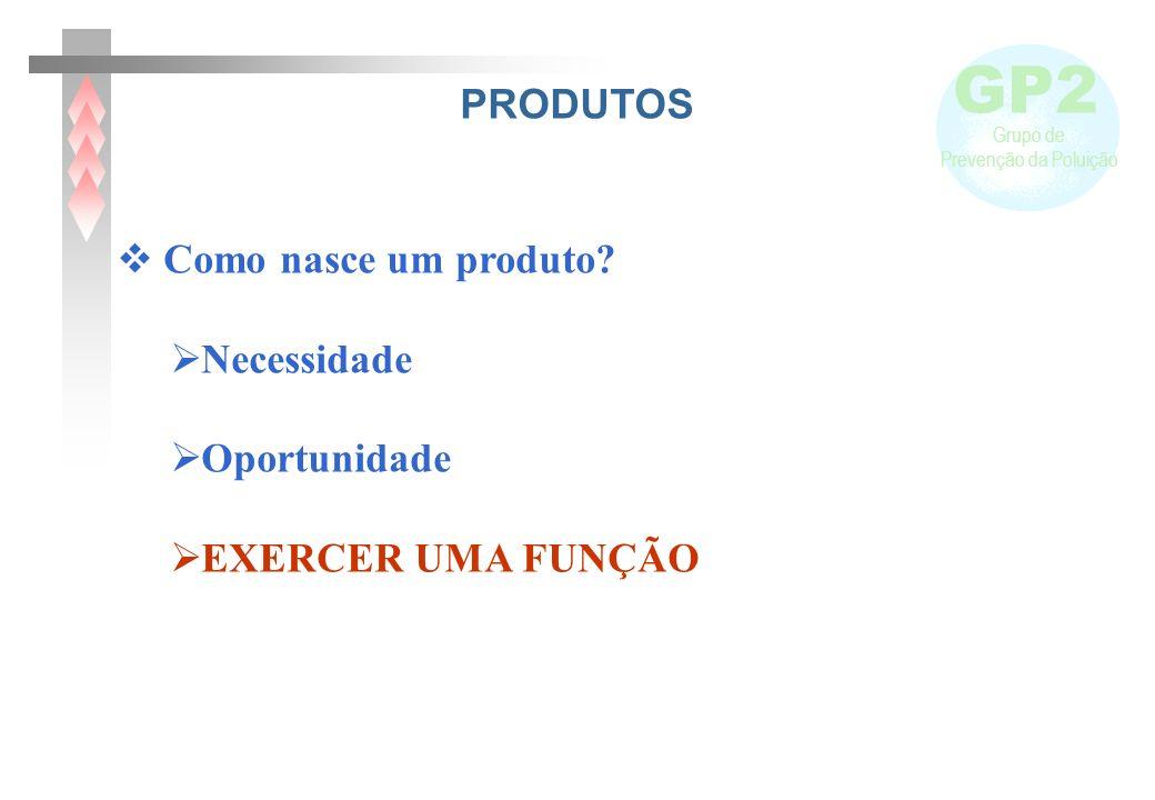 GP2 Grupo de Prevenção da Poluição PRODUTOS Como nasce um produto.