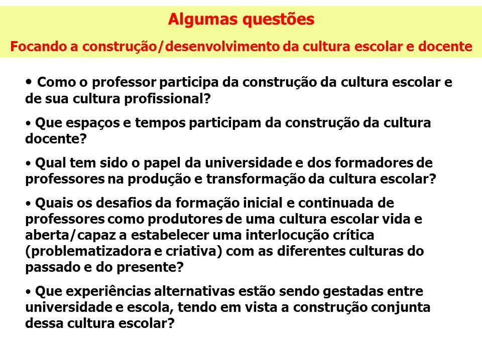 Algumas questões Focando a construção/desenvolvimento da cultura escolar e docente Como o professor participa da construção da cultura escolar e de su