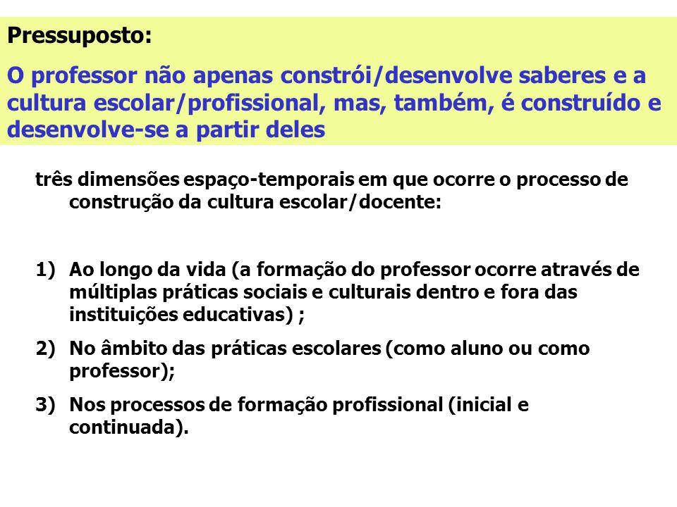 Pressuposto: O professor não apenas constrói/desenvolve saberes e a cultura escolar/profissional, mas, também, é construído e desenvolve-se a partir d