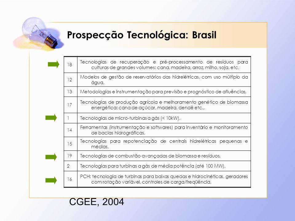 Prospecção Tecnológica: Brasil CGEE, 2004 18 Tecnologias de recuperação e pré-processamento de resíduos para culturas de grandes volumes: cana, madeira, arroz, milho, soja, etc, 12 Modelos de gestão de reservatórios das hidrelétricas, com uso múltiplo da água, 13Metodologias e instrumentação para previsão e prognóstico de afluências, 17 Tecnologias de produção agrícola e melhoramento genético de biomassa energética: cana de açúcar, madeira, dendê etc., 1Tecnologias de micro-turbinas a gás (< 10kW), 14 Ferramentas (instrumentação e softwares) para inventário e monitoramento de bacias hidrográficas, 15 Tecnologias para repotenciação de centrais hidrelétricas pequenas e médias, 19Tecnologias de combustão avançadas de biomassa e resíduos, 2Tecnologias para turbinas a gás de média potência (até 100 MW), 16 PCH: tecnologia de turbinas para baixas quedas e hidrocinéticas, geradores com rotação variável, controles de carga/freqüência,
