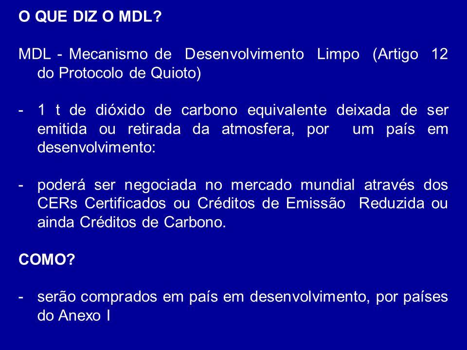 O QUE DIZ O MDL? MDL - Mecanismo de Desenvolvimento Limpo (Artigo 12 do Protocolo de Quioto) -1 t de dióxido de carbono equivalente deixada de ser emi