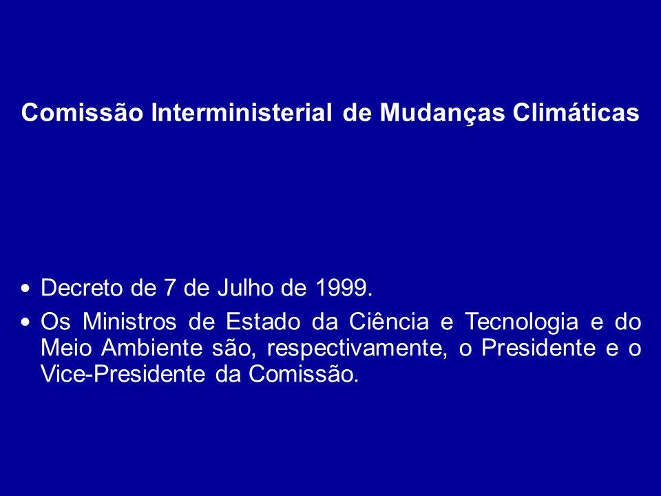 Decreto de 7 de Julho de 1999. Os Ministros de Estado da Ciência e Tecnologia e do Meio Ambiente são, respectivamente, o Presidente e o Vice-President