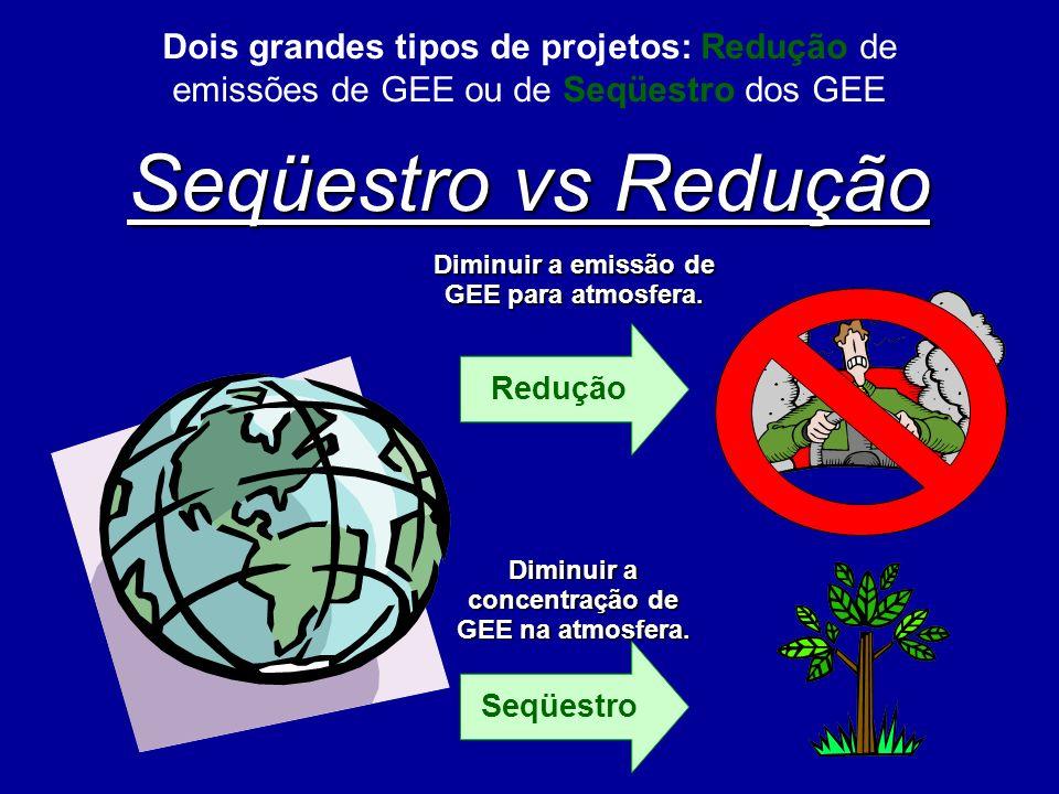 Seqüestro vs Redução Diminuir a emissão de GEE para atmosfera. Redução Seqüestro Diminuir a concentração de GEE na atmosfera. Dois grandes tipos de pr