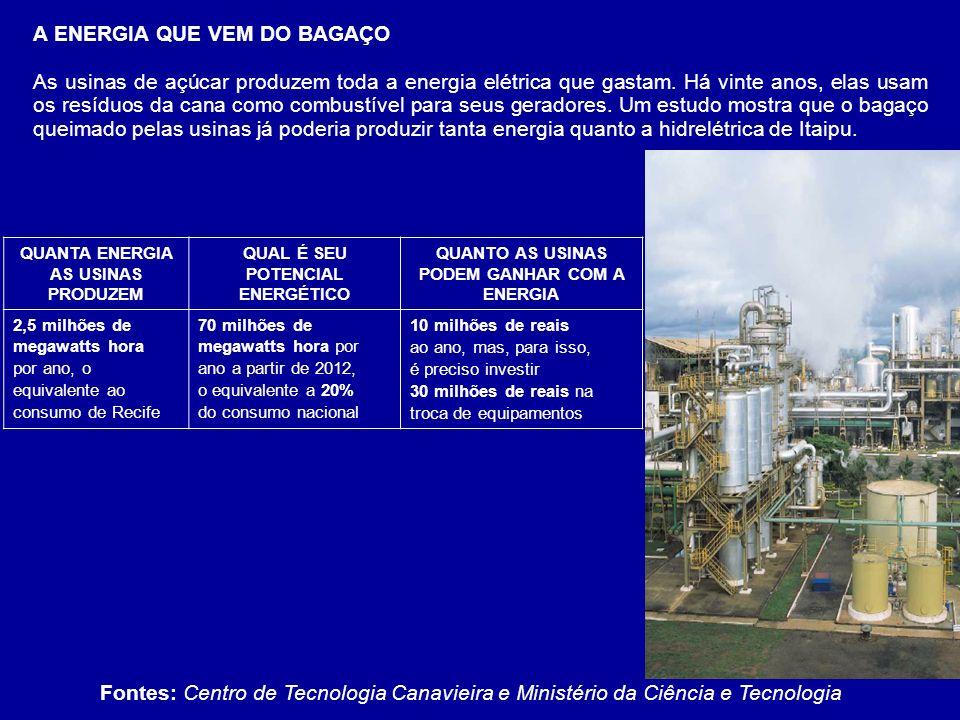 A ENERGIA QUE VEM DO BAGAÇO As usinas de açúcar produzem toda a energia elétrica que gastam. Há vinte anos, elas usam os resíduos da cana como combust