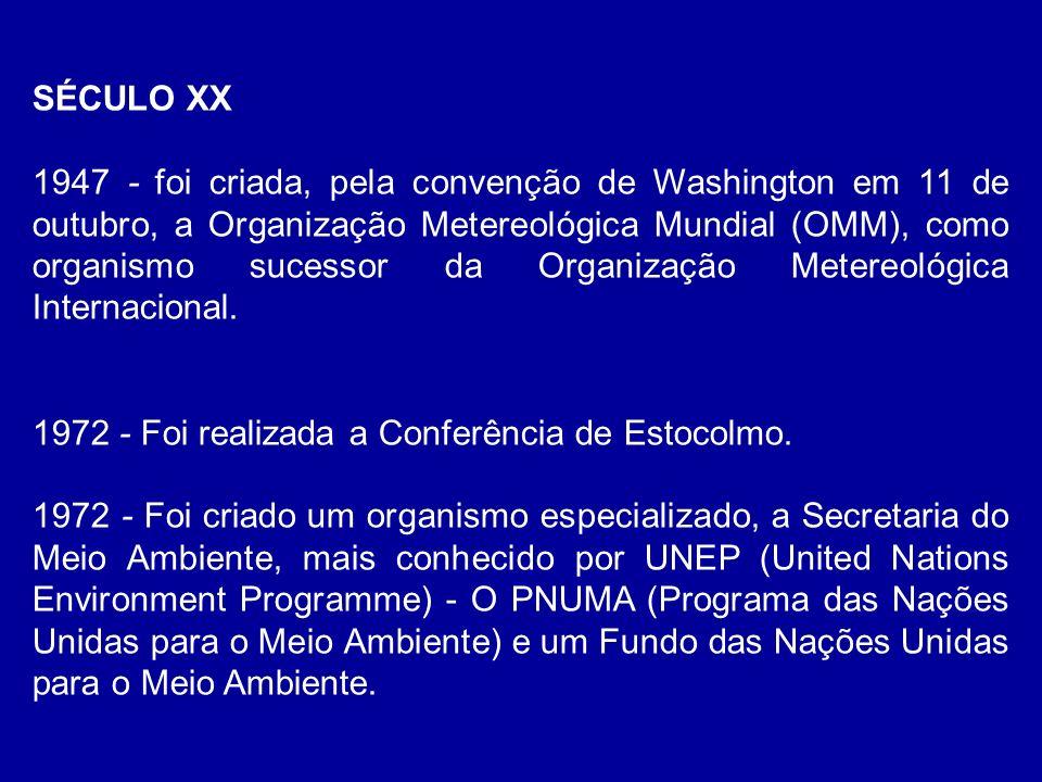 Para tratar do efeito estufa e suas conseqüências sobre a humanidade foram estabelecidos: TRATADOS INTERNACIONAIS CONVENÇÃO DO CLIMA (UNFCCC) assumida pela CE e por mais 154 países, incluindo o Brasil no Brasil a coordenação é do MCT, e no Brasil a coordenação é do MCT, e foi assinada em 1992 e ratificada em 1994 http://www.mct.gov.br/clima/convencao/texto.htmhttp://www.mct.gov.br/clima/convencao/texto.htm Português http://www.ilsd.ca/climate/index.htmlhttp://www.ilsd.ca/climate/index.html Inglês