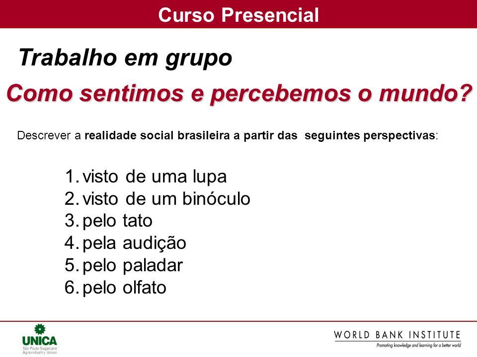 Trabalho em grupo Descrever a realidade social brasileira a partir das seguintes perspectivas: 1.visto de uma lupa 2.visto de um binóculo 3.pelo tato