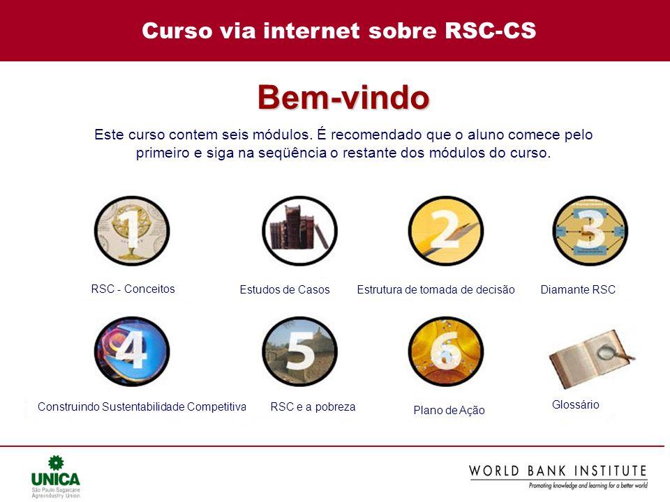 Curso via internet sobre RSC-CS RSC - Conceitos Estudos de CasosEstrutura de tomada de decisãoDiamante RSC Construindo Sustentabilidade CompetitivaRSC