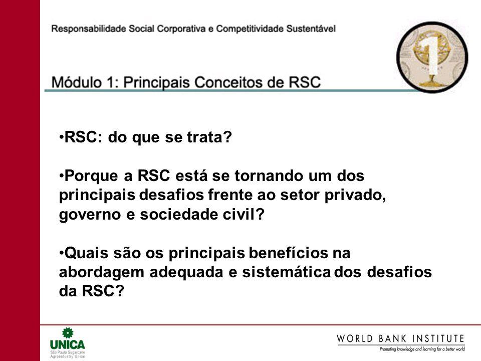 RSC: do que se trata? Porque a RSC está se tornando um dos principais desafios frente ao setor privado, governo e sociedade civil? Quais são os princi
