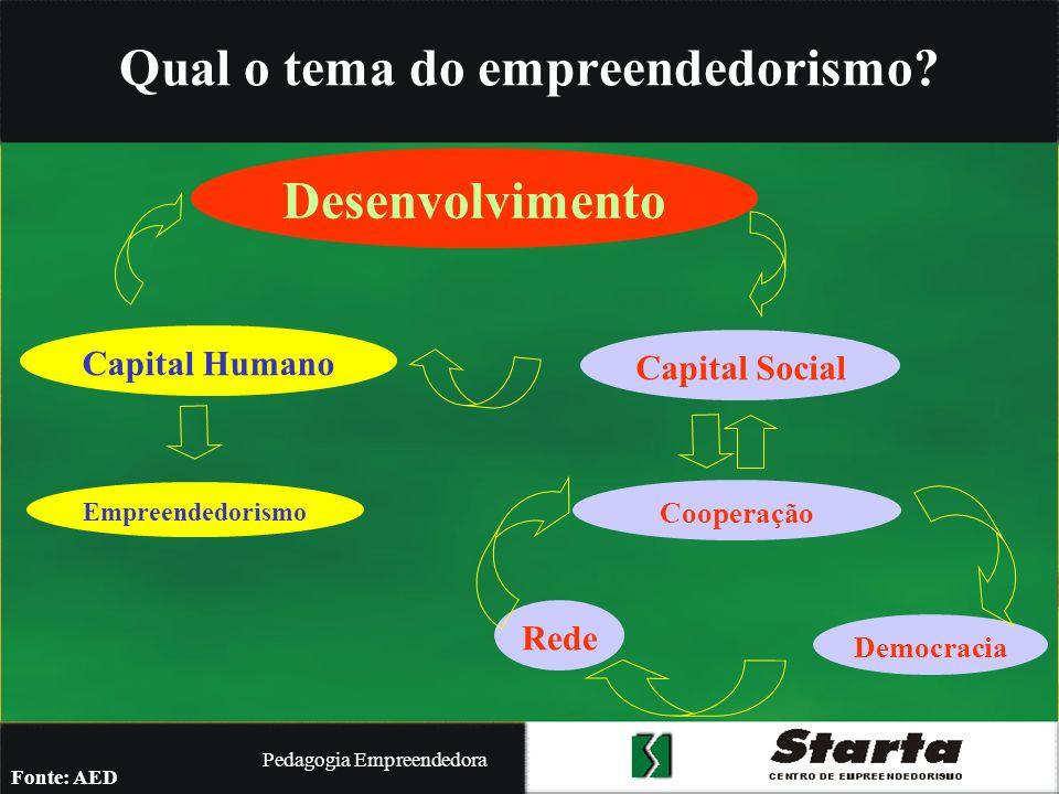 Pedagogia Empreendedora O empreendedor é alguém que sonha e busca transformar o seu sonho em realidade (Dolabela) TEORIA EMPREENDEDORA DOS SONHOS