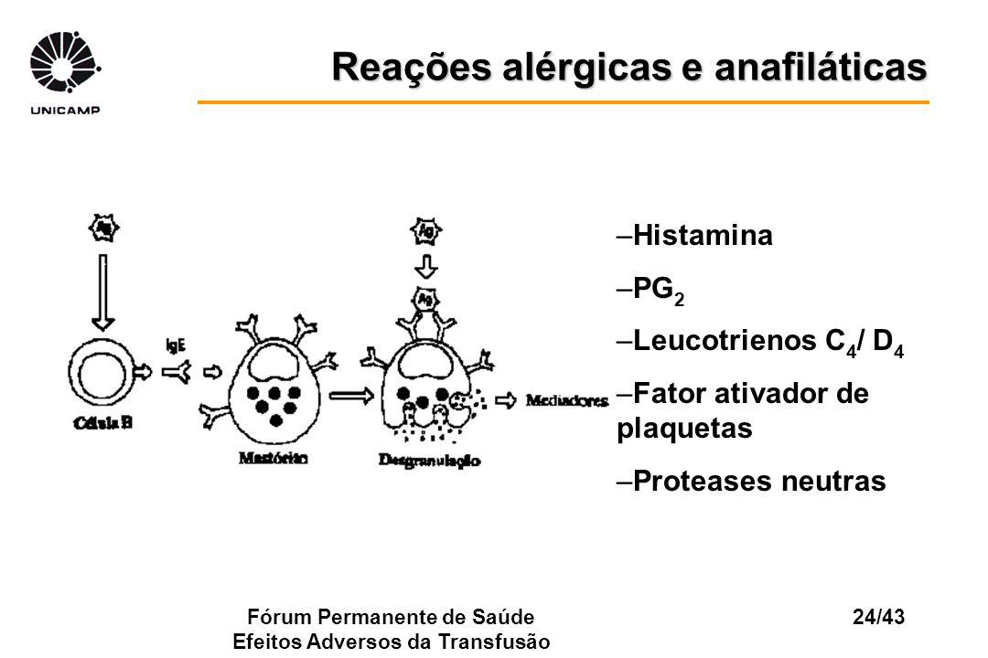 Fórum Permanente de Saúde Efeitos Adversos da Transfusão 24/43 Reações alérgicas e anafiláticas –Histamina –PG 2 –Leucotrienos C 4 / D 4 –Fator ativad