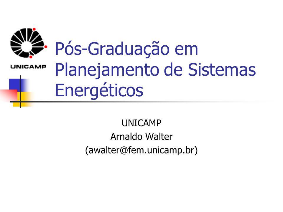Pós-Graduação em Planejamento de Sistemas Energéticos UNICAMP Arnaldo Walter (awalter@fem.unicamp.br)