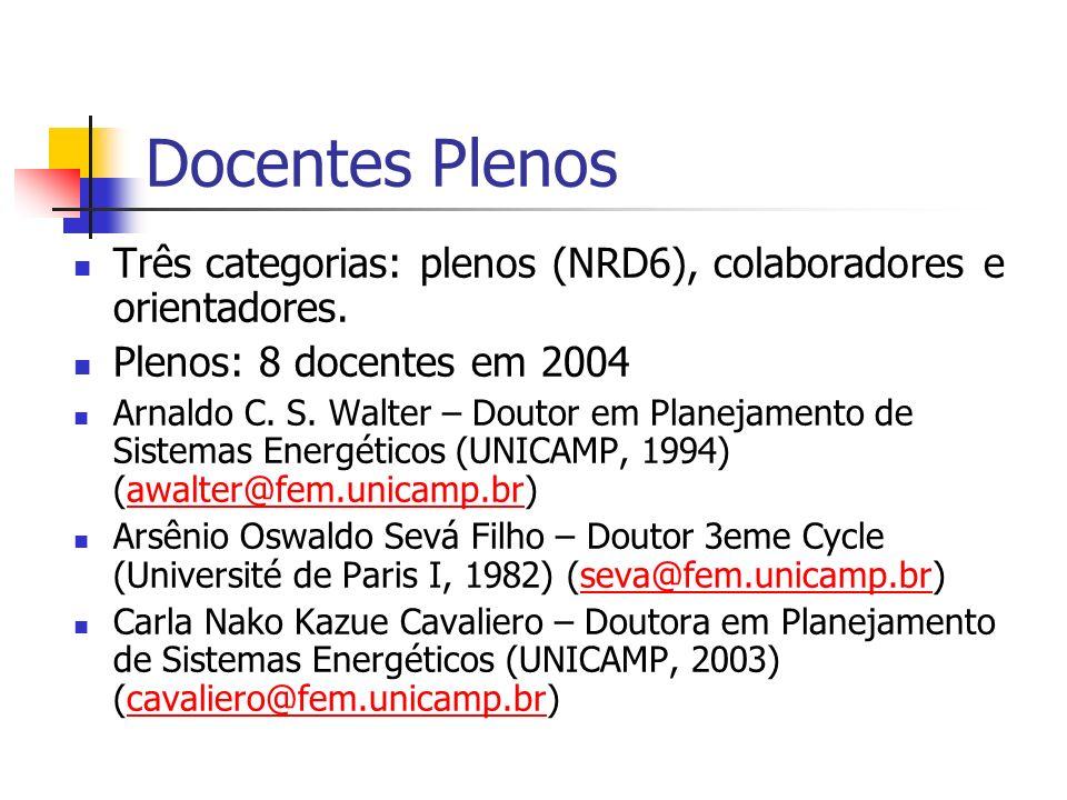 Docentes Plenos Três categorias: plenos (NRD6), colaboradores e orientadores. Plenos: 8 docentes em 2004 Arnaldo C. S. Walter – Doutor em Planejamento